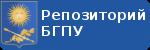 Профиль СорокоЕ.Н. в репозитории БГПУ